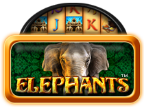 Elephants My Top Game