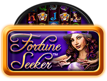 Fortune Seeker My Top Game