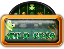 Wild Frog My Top Game